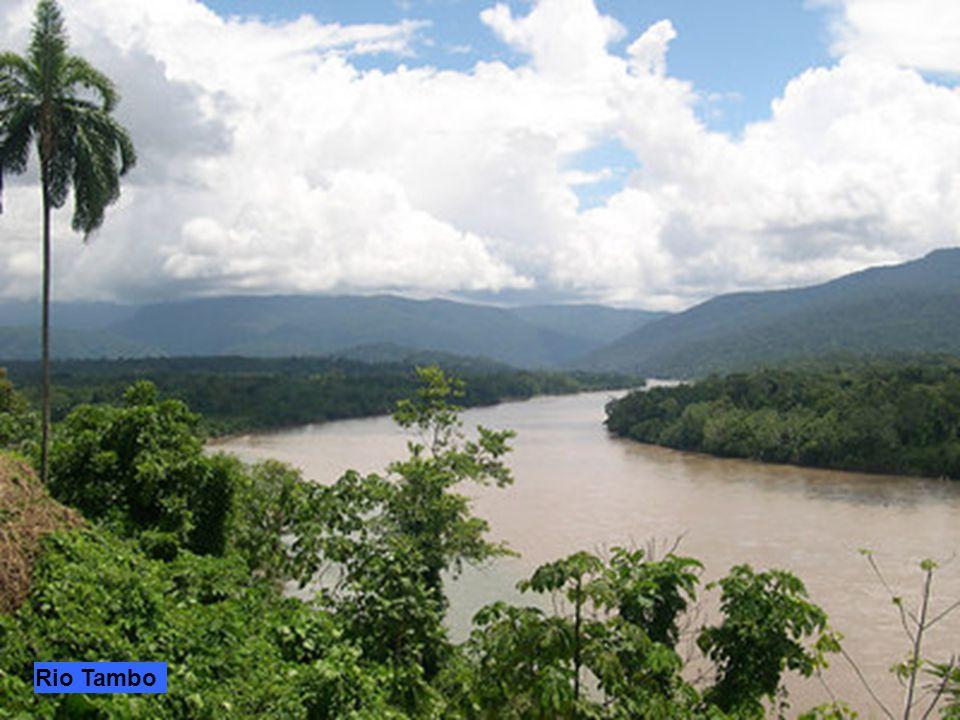 Iquitos è il maggior centro dell'Amazzonia peruviana sul Rio delle Amazzoni a 125 km a valle della confluenza dei fiumi Ucayali e Marañón. La città no