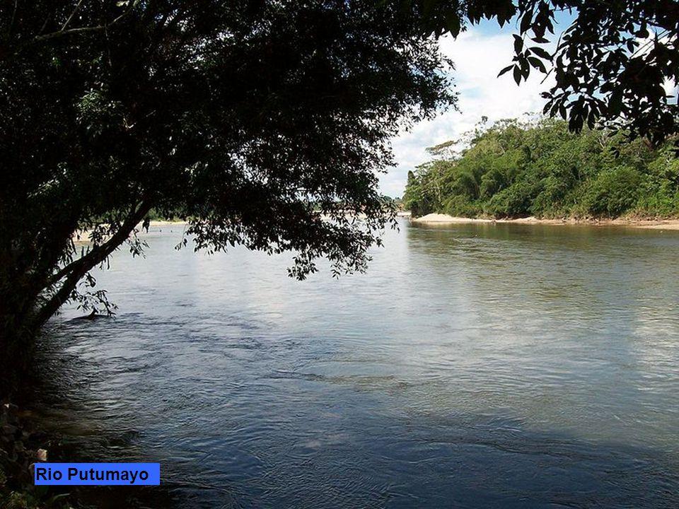 Rio UcayaliRio ApurimacRio EneRio Tambo