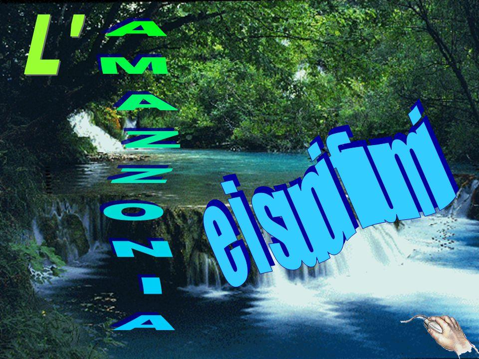 Il fiume Araguaia è uno dei maggiori fiumi del Brasile.