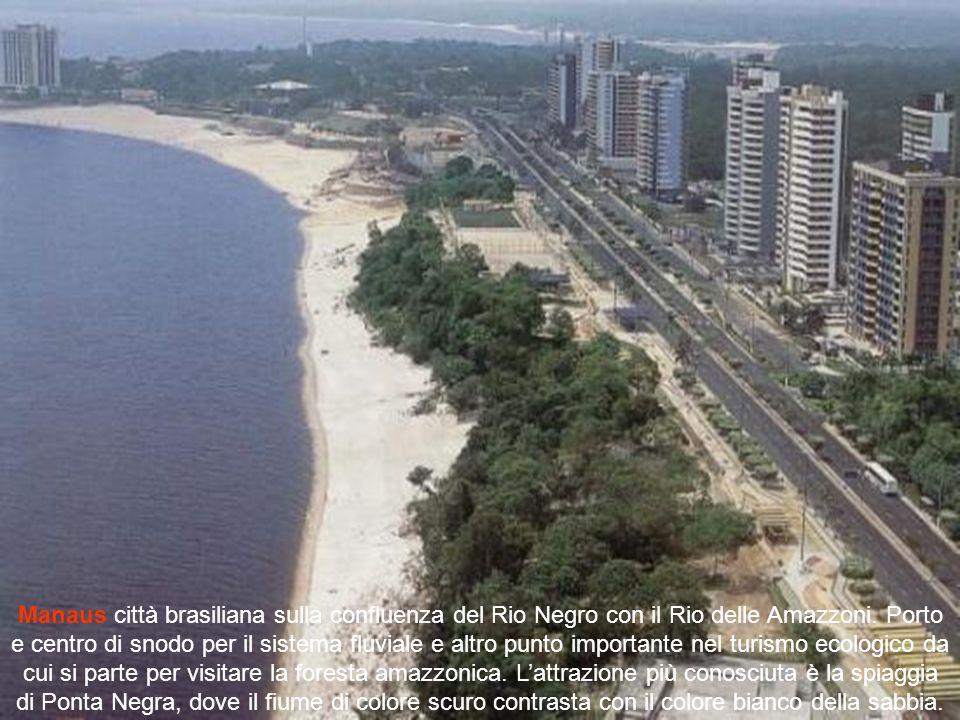 Il Rio Negro, il cui affluente principale è il Rio Vaupés, nasce in Colombia dove è chiamato Guainía, fra i bacini del Rio delle Amazzoni e dell'Orino