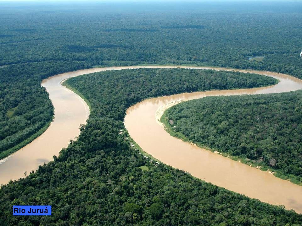 Nella mappa è evidenziato il canale naturale Casiquiare che collega Il Rio Negro al Rio Orinoco che scorre completamente in Venezuela e non fà parte d