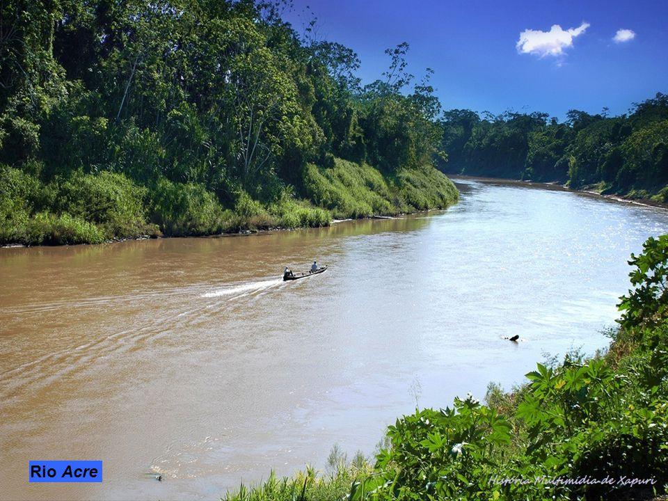 Il Juruá nasce dalle Ande peruviane, attraversa gli stati brasiliani di Acre ed Amazonas dove diventa uno degli affluenti maggiori del Rio delle Amazz