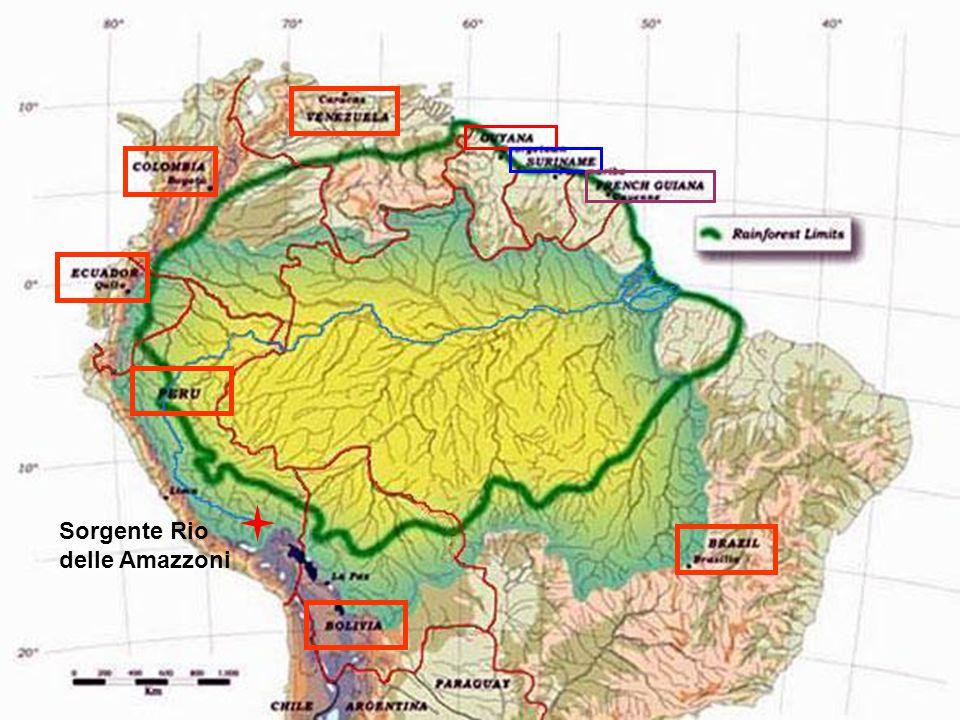 Foresta Amazzonica Nove nazioni si affacciano nell'area amazzonica: Brasile, Bolivia, Perù, Ecuador, Colombia, Venezuela, Guayana, Suriname e Guaiana Francese.