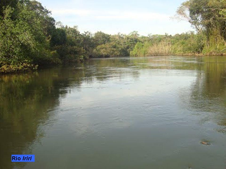 Indigeni del Parco del Xingu
