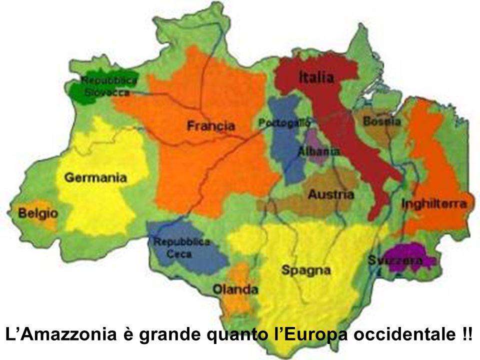 L'Amazzonia è grande quanto l'Europa occidentale !!
