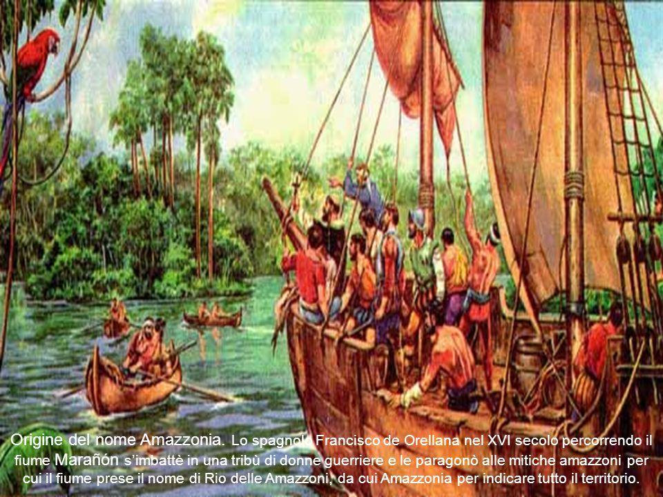 Origine del nome Amazzonia.