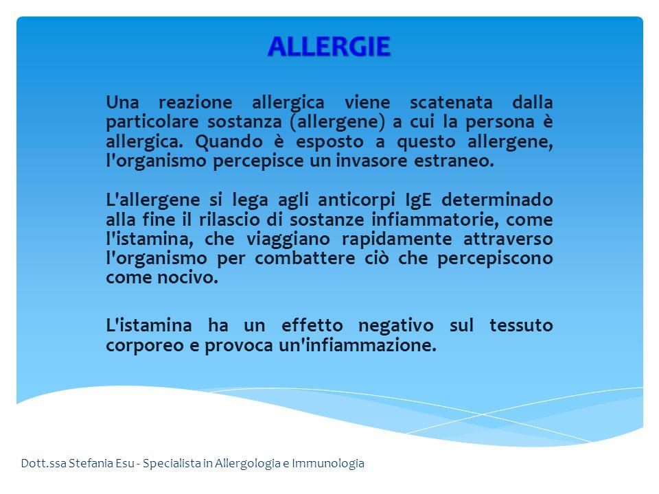 Una reazione allergica viene scatenata dalla particolare sostanza (allergene) a cui la persona è allergica. Quando è esposto a questo allergene, l'org