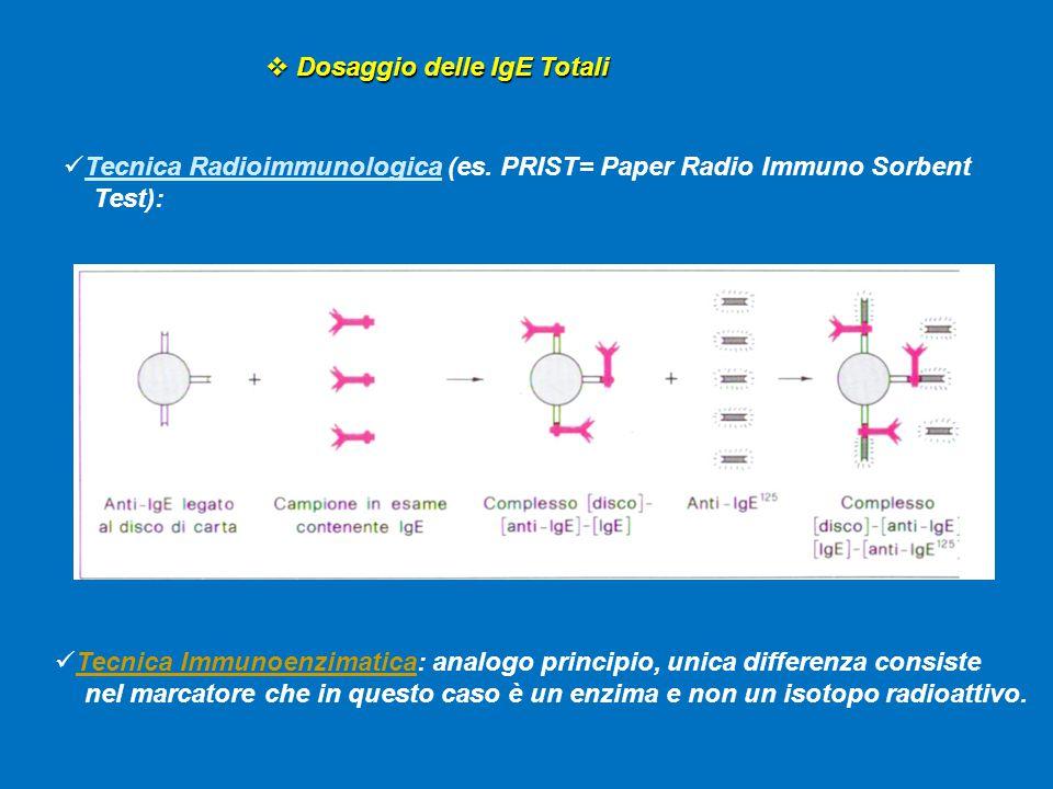  Dosaggio delle IgE Totali Tecnica Immunoenzimatica: analogo principio, unica differenza consiste nel marcatore che in questo caso è un enzima e non un isotopo radioattivo.