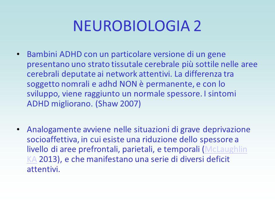 NEUROBIOLOGIA 2 Bambini ADHD con un particolare versione di un gene presentano uno strato tissutale cerebrale più sottile nelle aree cerebrali deputat