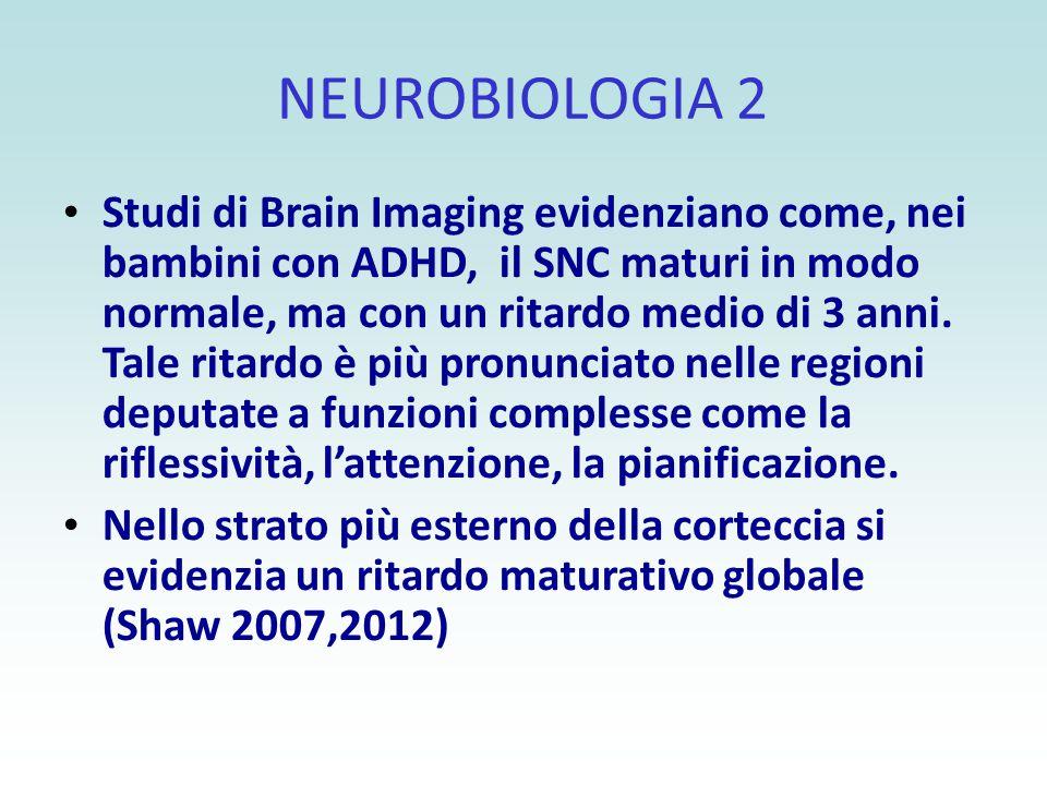 NEUROBIOLOGIA 2 Studi di Brain Imaging evidenziano come, nei bambini con ADHD, il SNC maturi in modo normale, ma con un ritardo medio di 3 anni. Tale