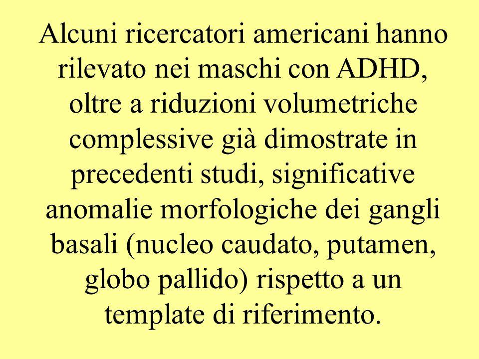 Alcuni ricercatori americani hanno rilevato nei maschi con ADHD, oltre a riduzioni volumetriche complessive già dimostrate in precedenti studi, signif