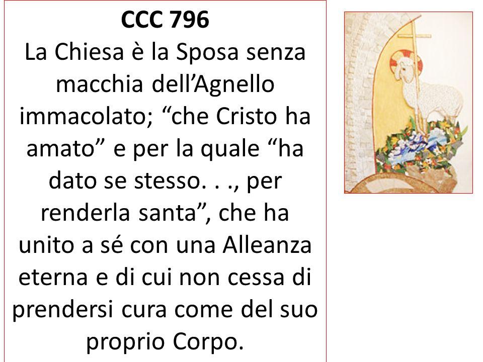 """CCC 796 La Chiesa è la Sposa senza macchia dell'Agnello immacolato; """"che Cristo ha amato"""" e per la quale """"ha dato se stesso..., per renderla santa"""", c"""