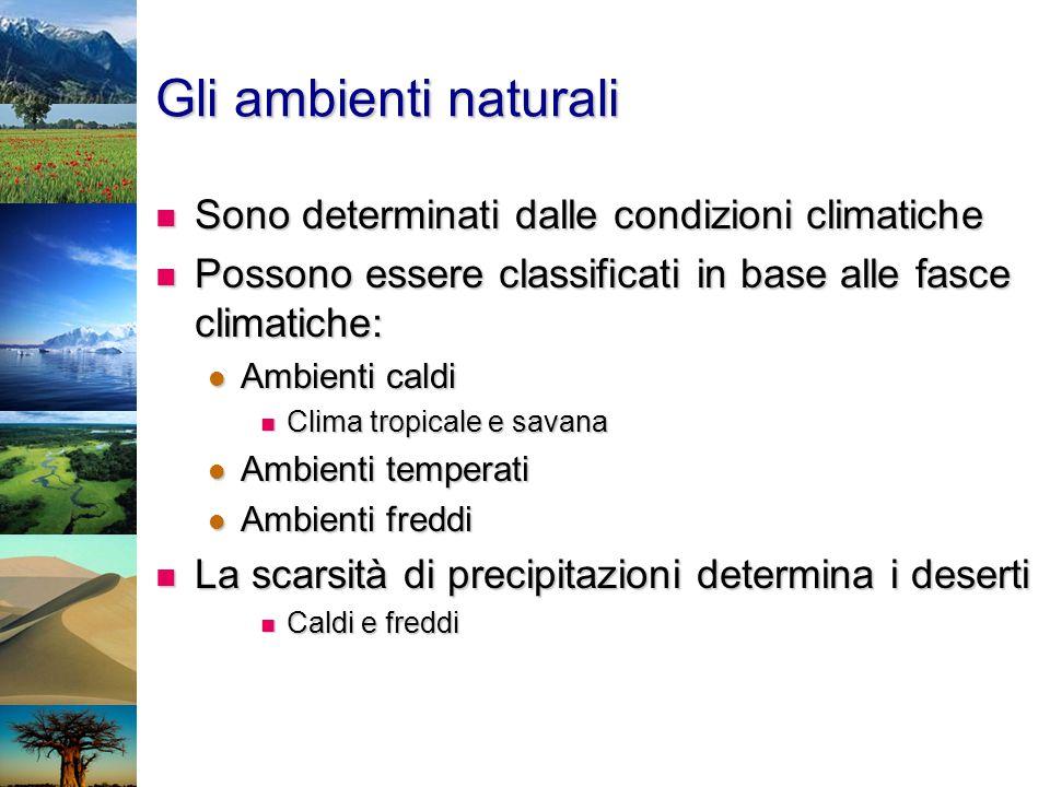 Gli ambienti naturali Sono determinati dalle condizioni climatiche Sono determinati dalle condizioni climatiche Possono essere classificati in base al