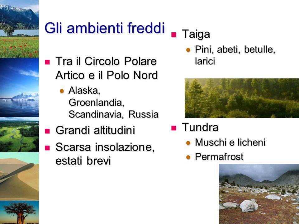 Gli ambienti freddi Tra il Circolo Polare Artico e il Polo Nord Tra il Circolo Polare Artico e il Polo Nord Alaska, Groenlandia, Scandinavia, Russia A