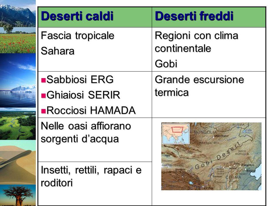 Deserti caldi Deserti freddi Fascia tropicale Sahara Regioni con clima continentale Gobi Sabbiosi ERG Sabbiosi ERG Ghiaiosi SERIR Ghiaiosi SERIR Rocci