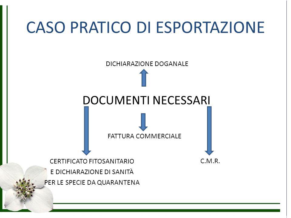 CASO PRATICO DI ESPORTAZIONE DOCUMENTI NECESSARI DICHIARAZIONE DOGANALE FATTURA COMMERCIALE C.M.R. CERTIFICATO FITOSANITARIO E DICHIARAZIONE DI SANITÀ