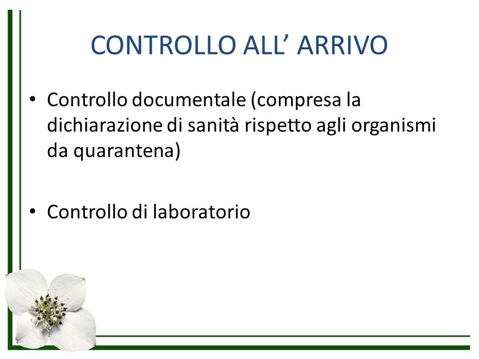 CONTROLLO ALL' ARRIVO Controllo documentale (compresa la dichiarazione di sanità rispetto agli organismi da quarantena) Controllo di laboratorio