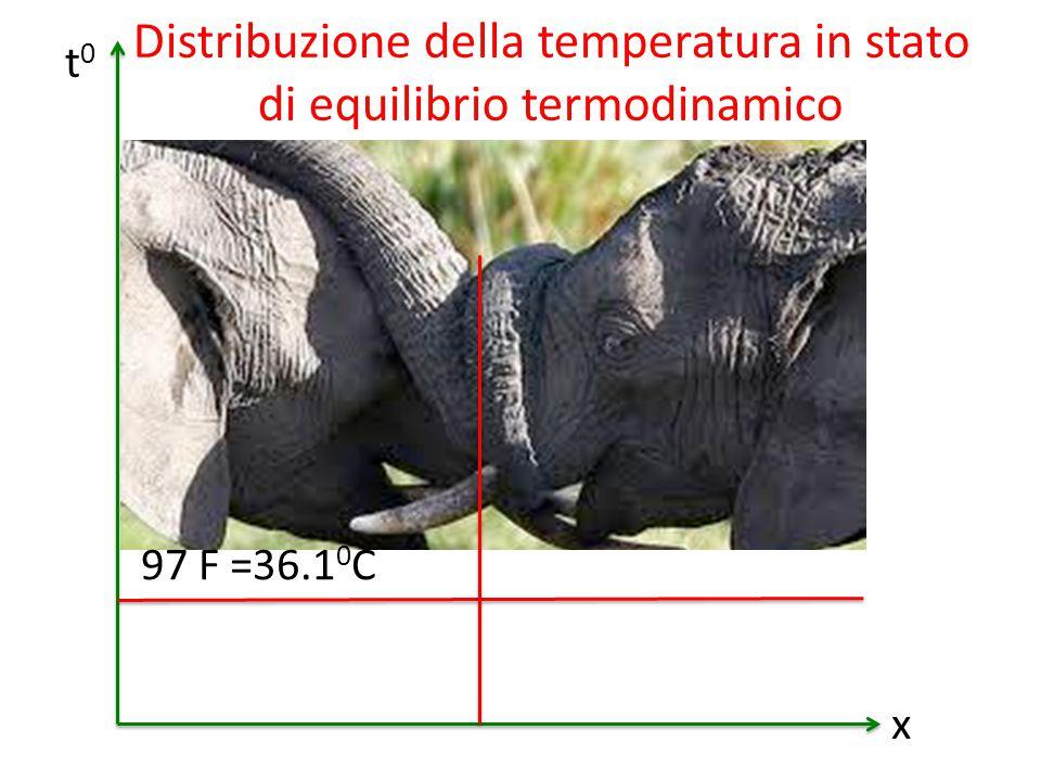 97 F =36.1 0 С t0t0 x Distribuzione della temperatura in stato di equilibrio termodinamico