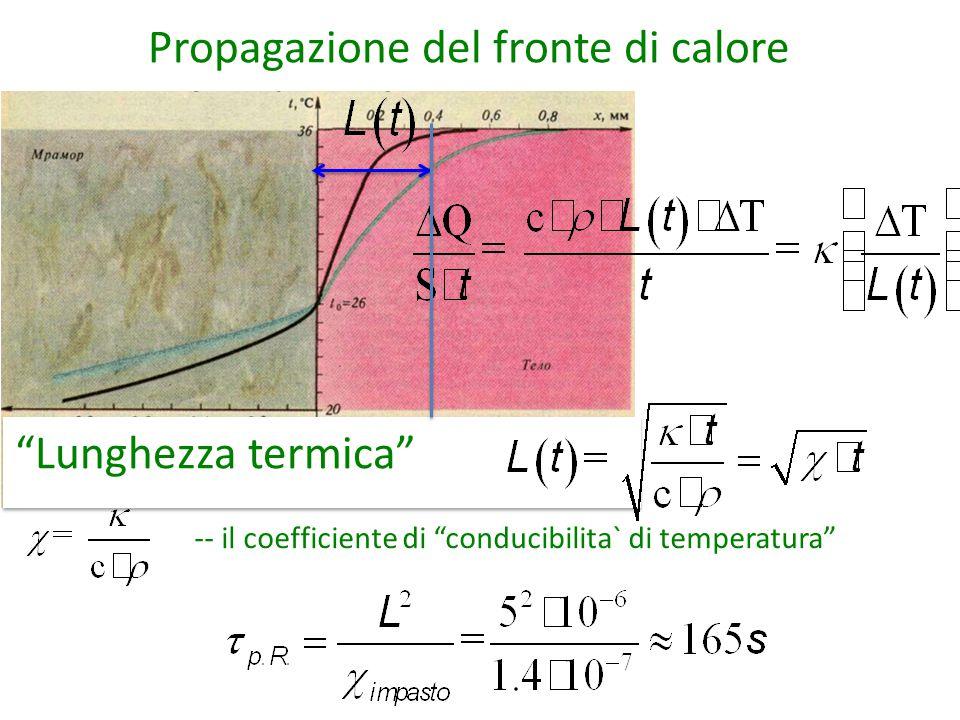 Propagazione del fronte di calore Lunghezza termica -- il coefficiente di conducibilita` di temperatura