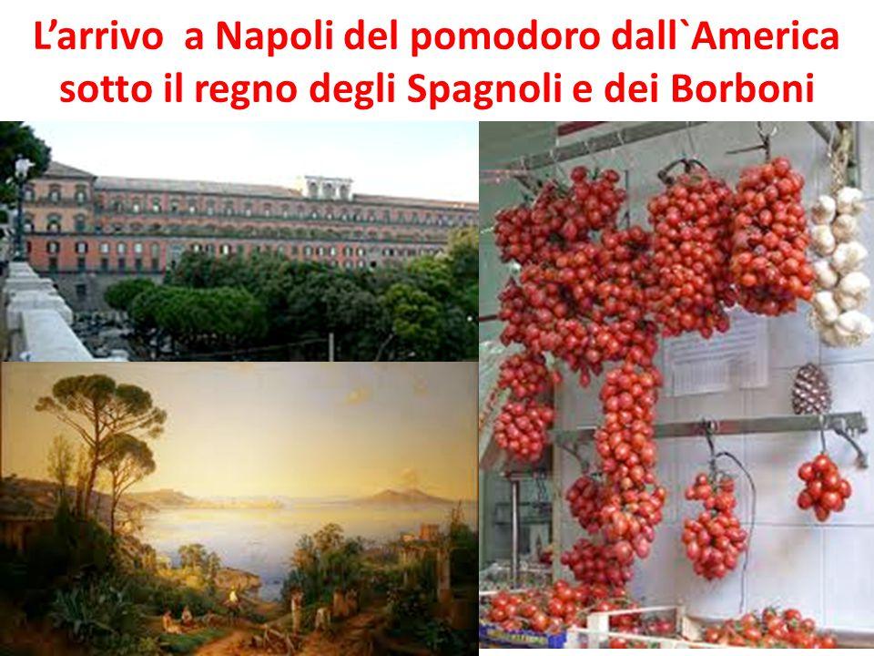 L'arrivo a Napoli del pomodoro dall`America sotto il regno degli Spagnoli e dei Borboni