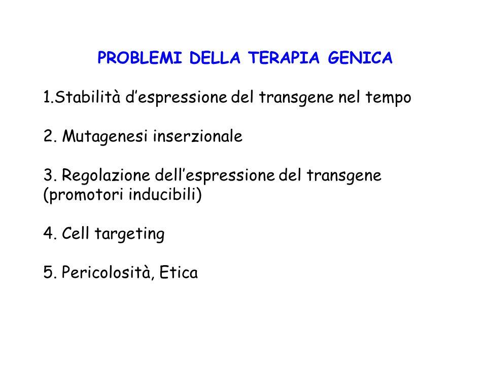 PROBLEMI DELLA TERAPIA GENICA 1.Stabilità d'espressione del transgene nel tempo 2. Mutagenesi inserzionale 3. Regolazione dell'espressione del transge