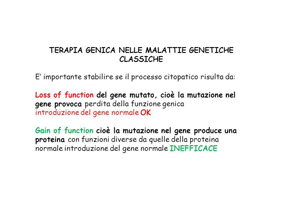 TERAPIA GENICA NELLE MALATTIE GENETICHE CLASSICHE E' importante stabilire se il processo citopatico risulta da: Loss of function del gene mutato, cioè