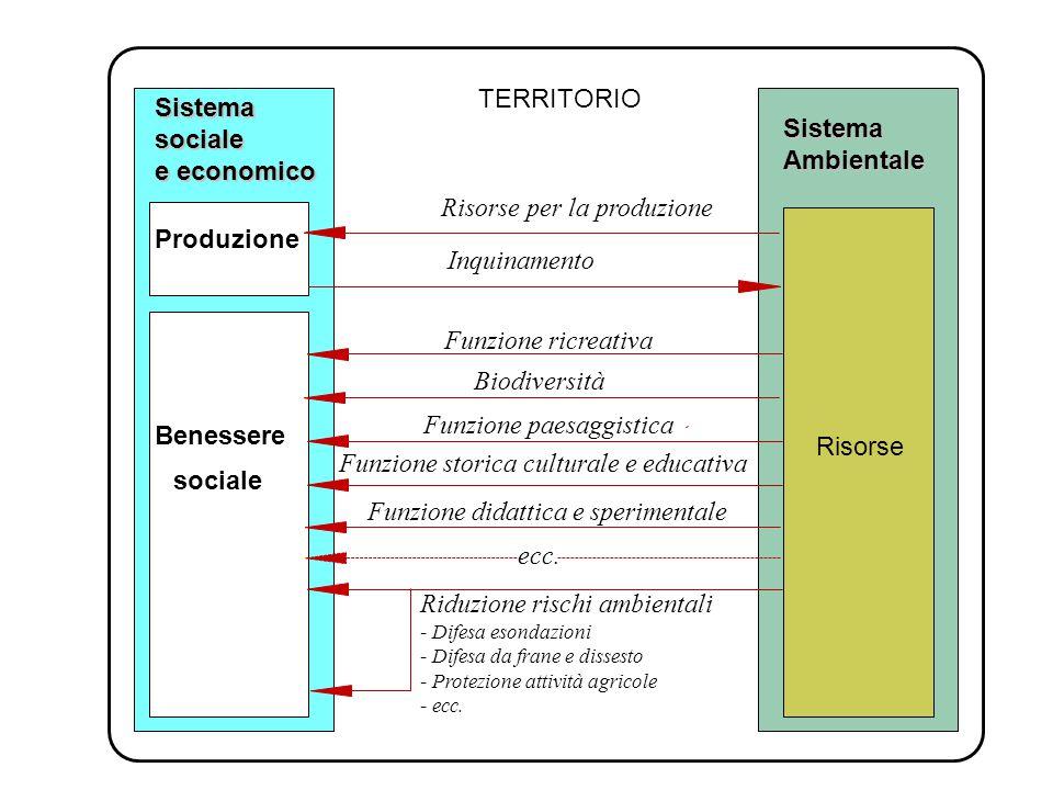 TERRITORIO Sistemasociale e economico SistemaAmbientale Benessere sociale Inquinamento Riduzione rischi ambientali - Difesa esondazioni - Difesa da frane e dissesto - Protezione attività agricole - ecc.