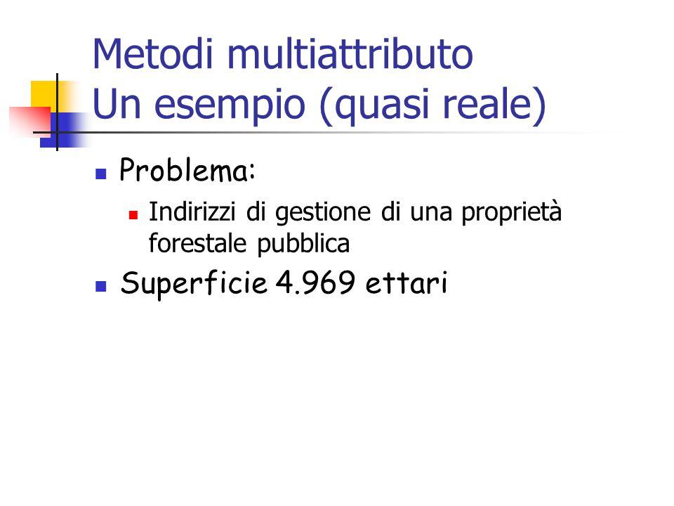 Metodi multiattributo Un esempio (quasi reale) Problema: Indirizzi di gestione di una proprietà forestale pubblica Superficie 4.969 ettari