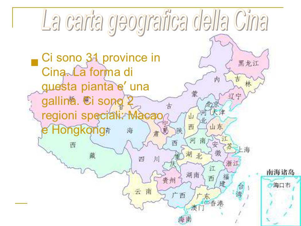 Ci sono 31 province in Cina. La forma di questa pianta e ' una gallina. Ci sono 2 regioni speciali: Macao e Hongkong.