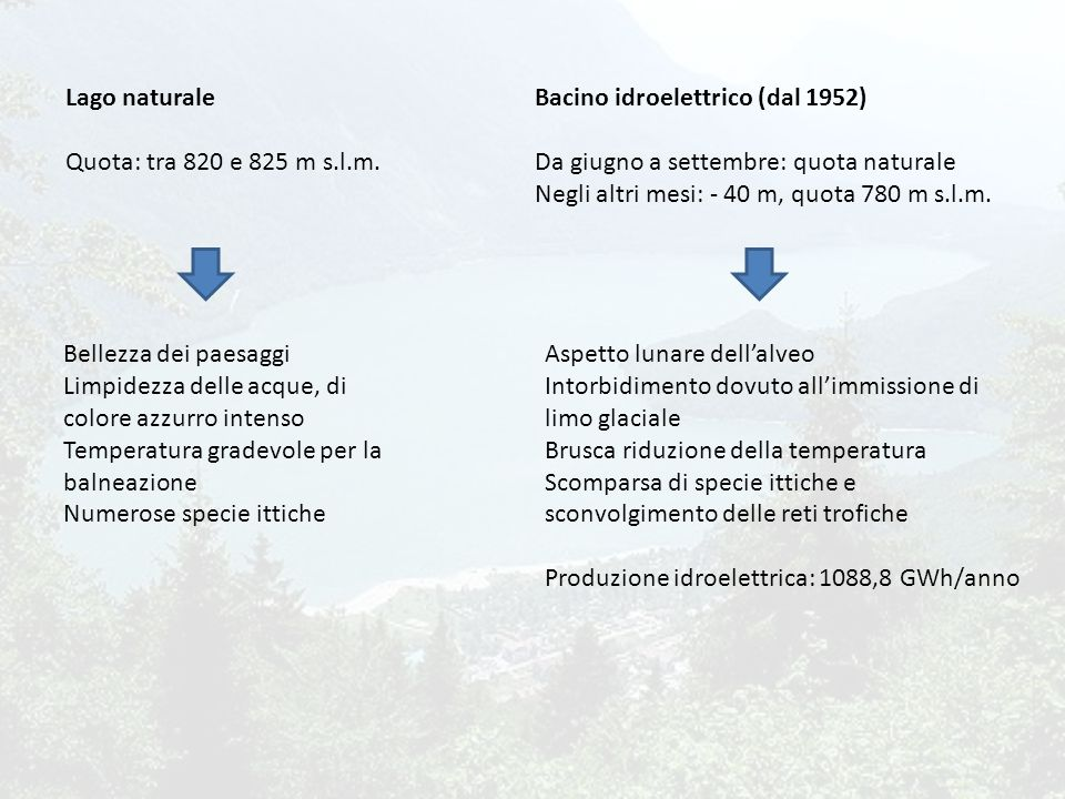 Lago naturale Quota: tra 820 e 825 m s.l.m.