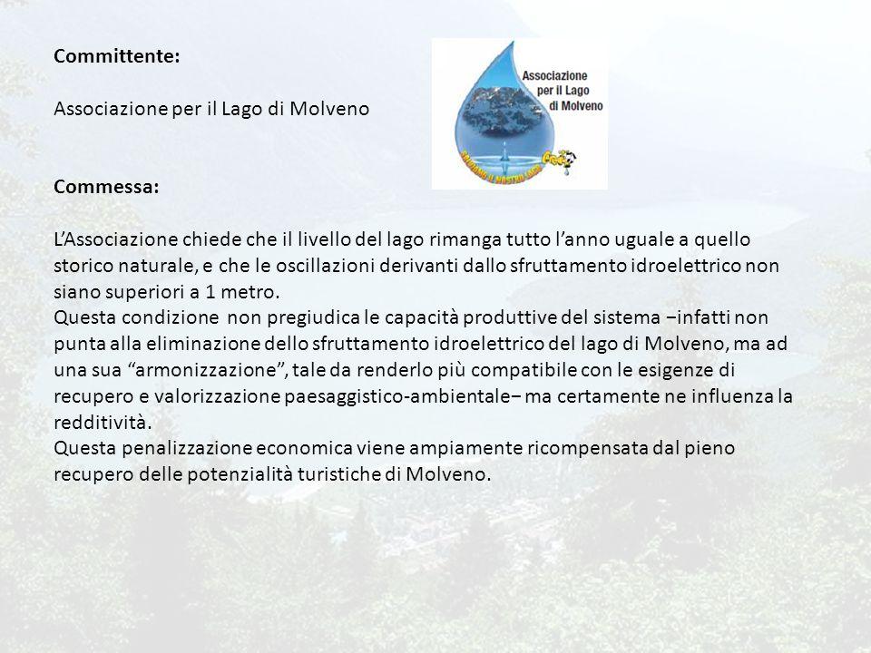 Committente: Associazione per il Lago di Molveno Commessa: L'Associazione chiede che il livello del lago rimanga tutto l'anno uguale a quello storico naturale, e che le oscillazioni derivanti dallo sfruttamento idroelettrico non siano superiori a 1 metro.