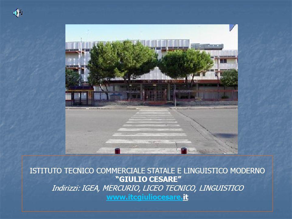 ISTITUTO TECNICO COMMERCIALE STATALE E LINGUISTICO MODERNO GIULIO CESARE Indirizzi: IGEA, MERCURIO, LICEO TECNICO, LINGUISTICO www.itcgiuliocesare.www.itcgiuliocesare.it