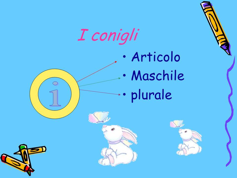 I conigli Articolo Maschile plurale