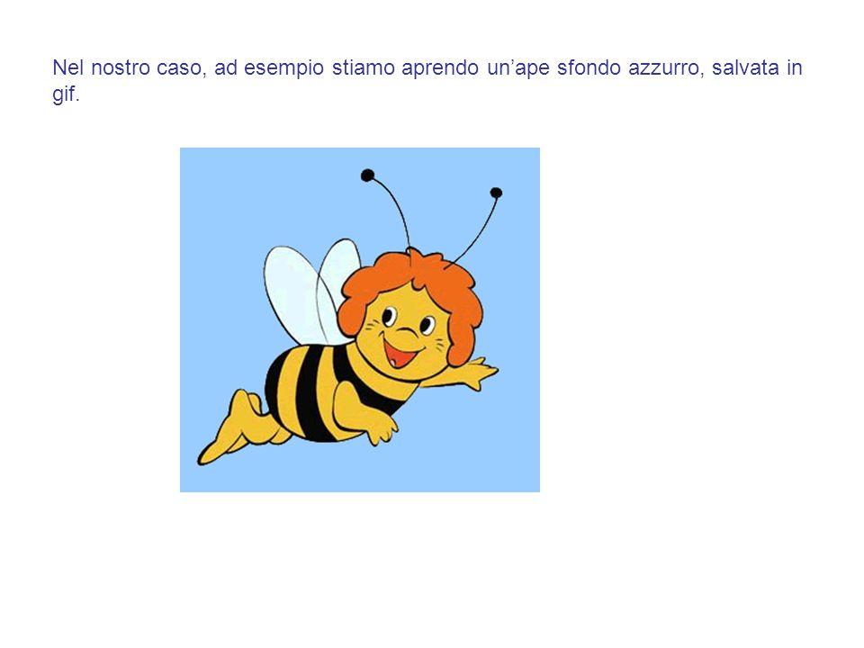 Nel nostro caso, ad esempio stiamo aprendo un'ape sfondo azzurro, salvata in gif.