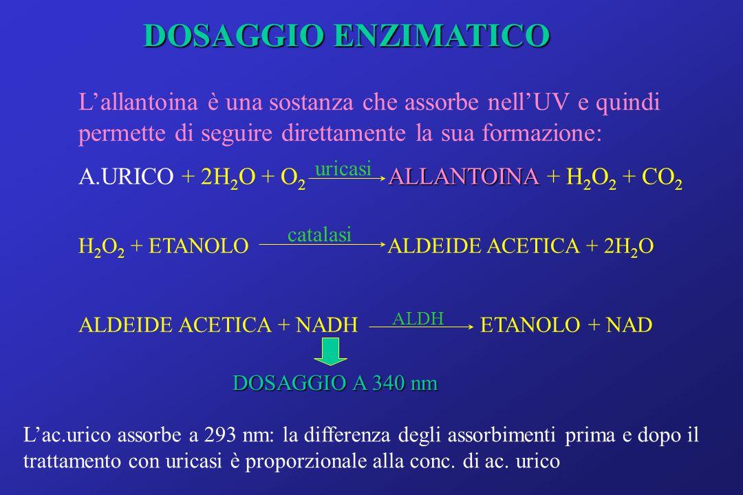 DOSAGGIO ENZIMATICO L'allantoina è una sostanza che assorbe nell'UV e quindi permette di seguire direttamente la sua formazione: ALLANTOINA A.URICO + 2H 2 O + O 2 ALLANTOINA + H 2 O 2 + CO 2 H 2 O 2 + ETANOLO ALDEIDE ACETICA + 2H 2 O ALDEIDE ACETICA + NADH ETANOLO + NAD uricasi catalasi ALDH DOSAGGIO A 340 nm L'ac.urico assorbe a 293 nm: la differenza degli assorbimenti prima e dopo il trattamento con uricasi è proporzionale alla conc.