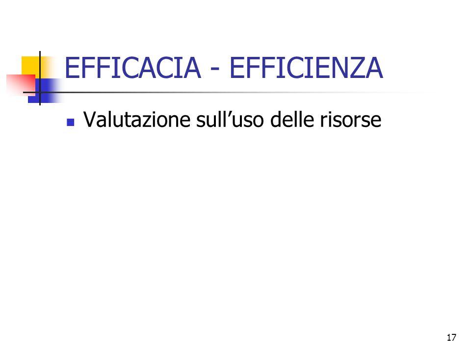 17 EFFICACIA - EFFICIENZA Valutazione sull'uso delle risorse