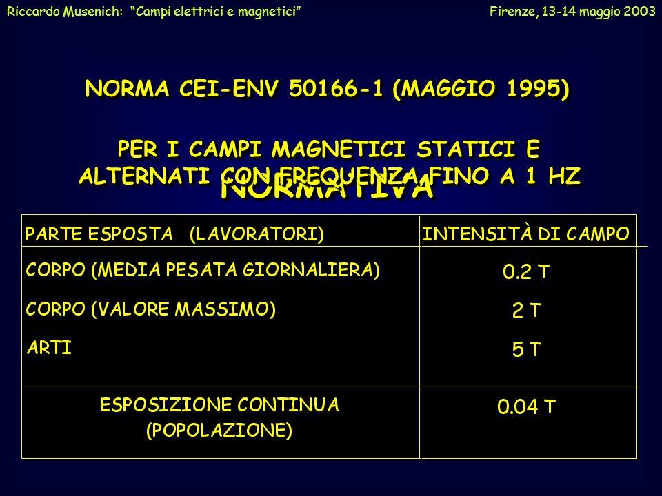 """Riccardo Musenich: """"Campi elettrici e magnetici"""" Firenze, 13-14 maggio 2003"""