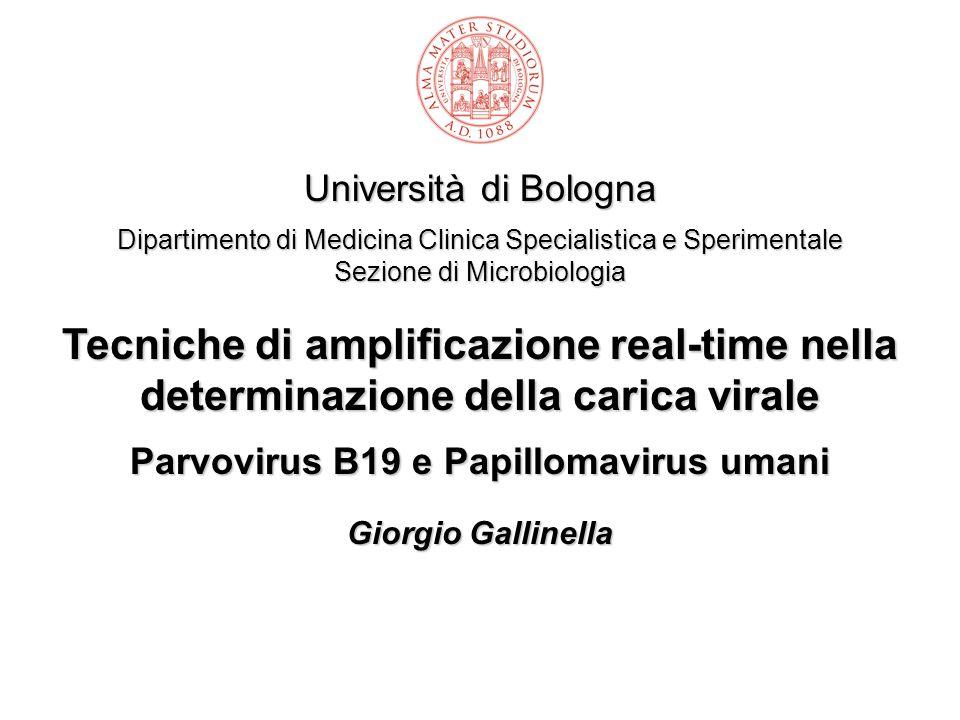 Università di Bologna Dipartimento di Medicina Clinica Specialistica e Sperimentale Sezione di Microbiologia Tecniche di amplificazione real-time nell