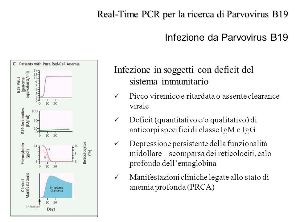 Infezione in soggetti con deficit del sistema immunitario Picco viremico e ritardata o assente clearance virale Deficit (quantitativo e/o qualitativo)