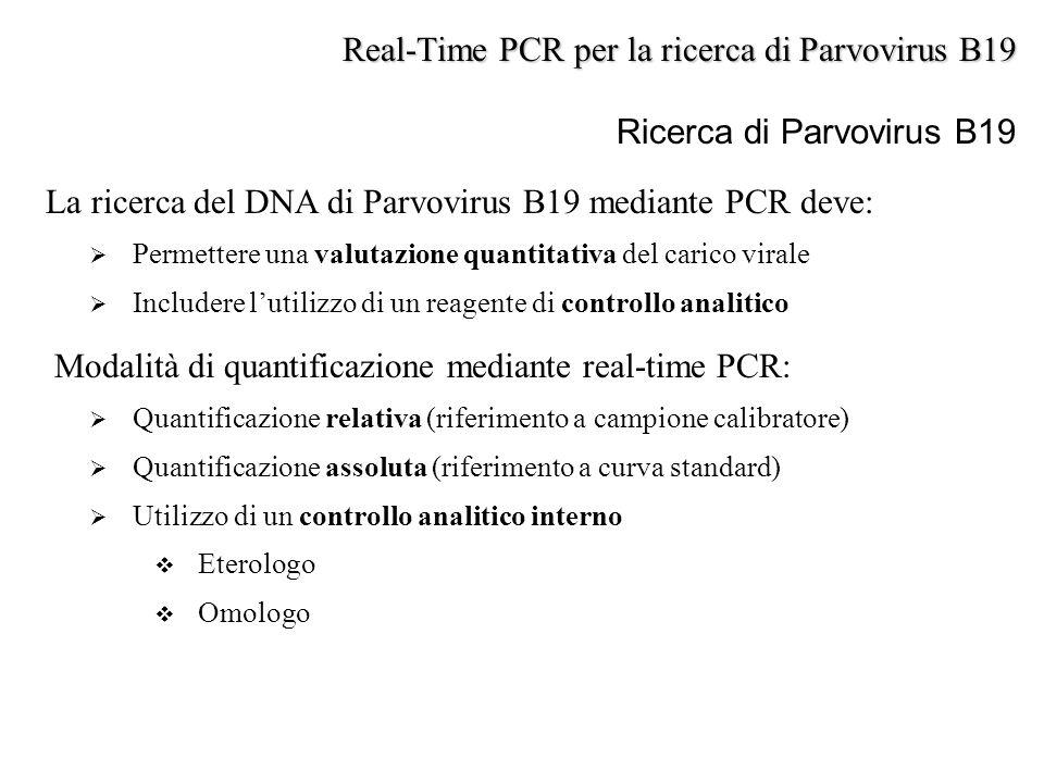Ricerca di Parvovirus B19 La ricerca del DNA di Parvovirus B19 mediante PCR deve:  Permettere una valutazione quantitativa del carico virale  Includ