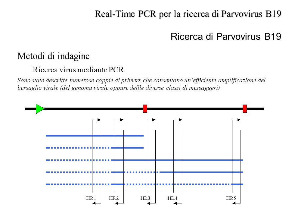 Metodi di indagine Ricerca virus mediante PCR Sono state descritte numerose coppie di primers che consentono un'efficiente amplificazione del bersagli