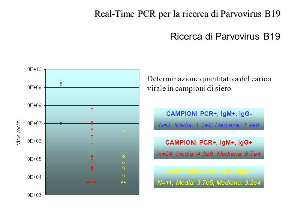 Ricerca di Parvovirus B19 Real-Time PCR per la ricerca di Parvovirus B19 CAMPIONI PCR+, IgM+, IgG- N=3, Media: 1.1e9; Mediana: 1.4e9 CAMPIONI PCR+, Ig