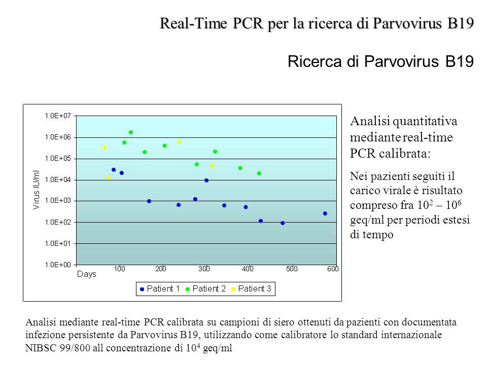 Ricerca di Parvovirus B19 Analisi mediante real-time PCR calibrata su campioni di siero ottenuti da pazienti con documentata infezione persistente da