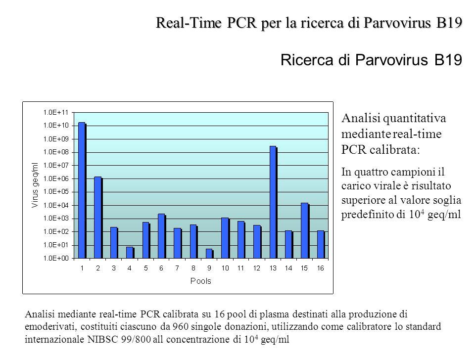 Ricerca di Parvovirus B19 Analisi mediante real-time PCR calibrata su 16 pool di plasma destinati alla produzione di emoderivati, costituiti ciascuno