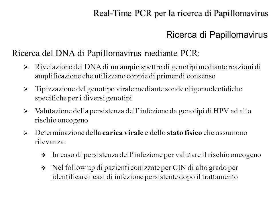 Ricerca di Papillomavirus Ricerca del DNA di Papillomavirus mediante PCR:  Rivelazione del DNA di un ampio spettro di genotipi mediante reazioni di a