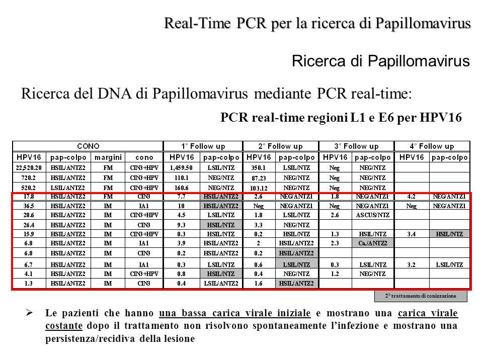 Ricerca di Papillomavirus Ricerca del DNA di Papillomavirus mediante PCR real-time: PCR real-time regioni L1 e E6 per HPV16 Real-Time PCR per la ricer