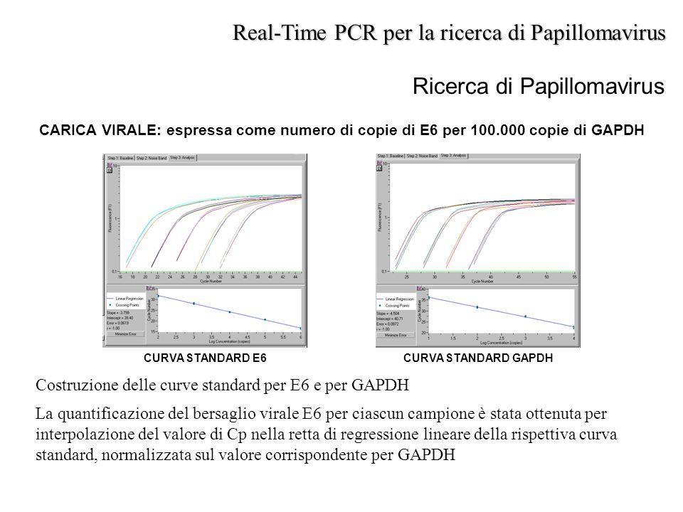 Costruzione delle curve standard per E6 e per GAPDH La quantificazione del bersaglio virale E6 per ciascun campione è stata ottenuta per interpolazion