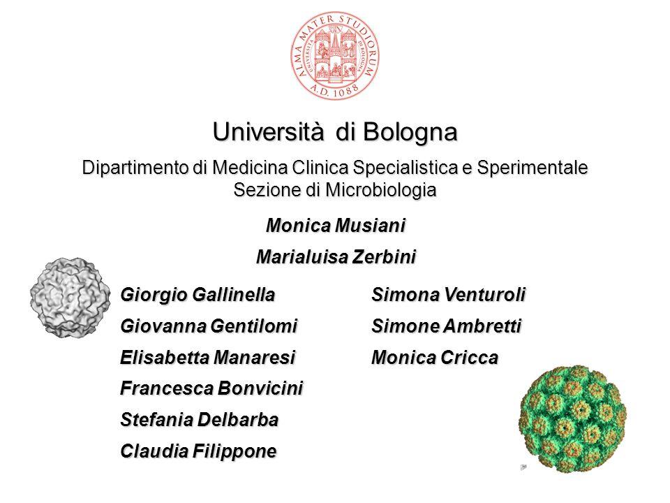 Università di Bologna Dipartimento di Medicina Clinica Specialistica e Sperimentale Sezione di Microbiologia Monica Musiani Marialuisa Zerbini Giorgio