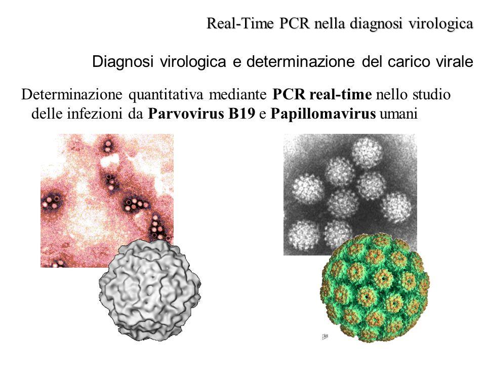 Diagnosi virologica e determinazione del carico virale Real-Time PCR nella diagnosi virologica Determinazione quantitativa mediante PCR real-time nell