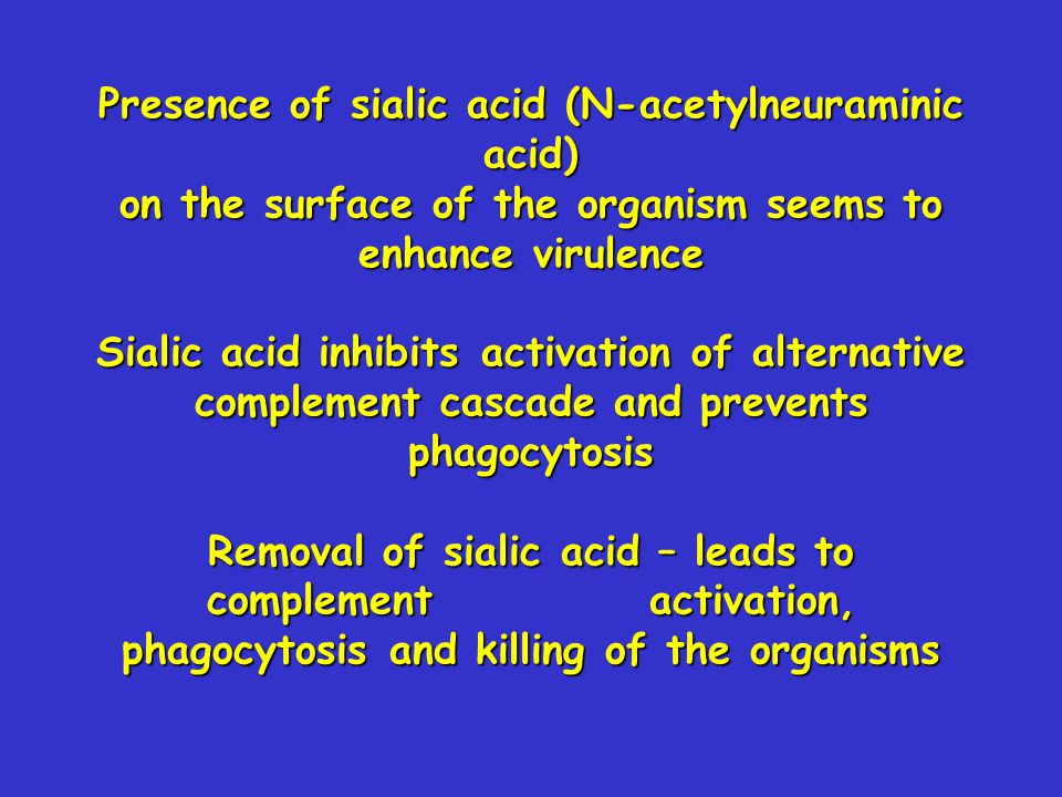 Presence of sialic acid (N-acetylneuraminic acid) on the surface of the organism seems to enhance virulence Sialic acid inhibits activation of alternative complement cascade and prevents phagocytosis Removal of sialic acid – leads to complement activation, phagocytosis and killing of the organisms